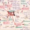 Ukázka mentální mapy 5