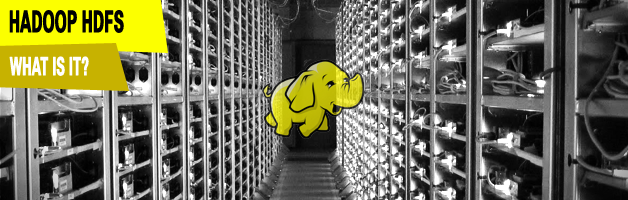 Hadoop Distributed File System (HDFS)