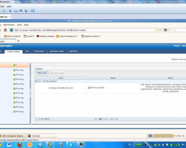 IBM InfoSphere BigInsights v2.0 running in virtual machine